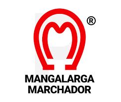 HARAS CC2 – MANGALARGA MARCHADOR – NOVO CONCEITO DA MARCHA